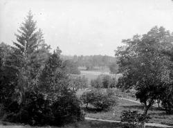 1899 001