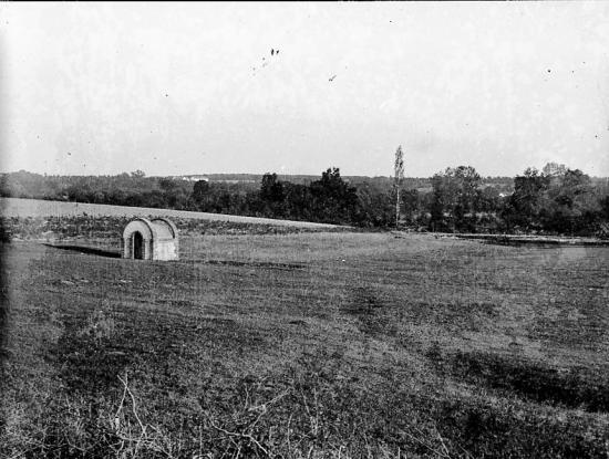 1899 019