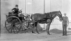 1899 tgf 037 5 3