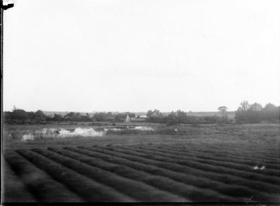 1902 546