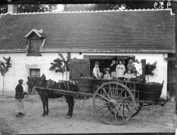 1904 959