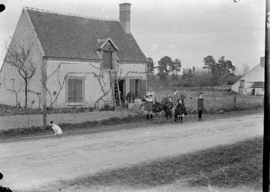 1908 tgf 207