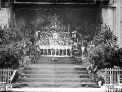 1908 tgf 229 3